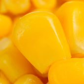Corn Kernels Macro — Stock Photo