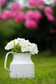 White Petunia Flowers in Pot Outdoors — Stock Photo