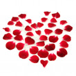 Heart Shape Made of Red Rose Petals — Stock Photo #50773469