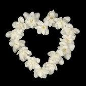 Heart Shape Made of White Jasmine Flowers on Black Background — Stock Photo