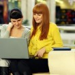 Two young women viewing laptop - Stock Photo