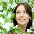 Portrait of beautiful woman in spring blossom - Stok fotoğraf