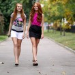 Happy young women walking in summer park — Stock Photo