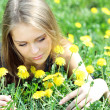 Постер, плакат: Young woman blows on a dandelion