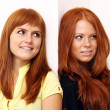 Royalty-Free Stock Photo: Two young beautiful redhead women