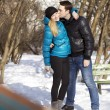 Happy young couple in winter park — Stock Photo