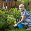Mature woman in the garden — Stock fotografie #28514671