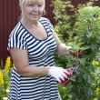 Mature woman in the garden — Stock Photo