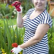 Mature woman in the garden — Stock Photo #28514851
