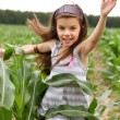 Joyful little girl running through the corn field — Stock Photo