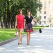 Two young women walking in the summer city — Stock Photo #28549953