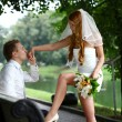 Young bride and groom in the summer park — Stock fotografie