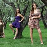 Three beautiful girls — Stock Photo #34401163