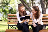 Twins of sister readink book — Stock Photo