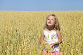 Little girl in a wheat golden field — Stockfoto