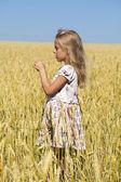 Bir buğday altın alanda küçük kız — Stok fotoğraf