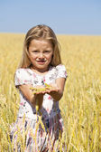 Little girl in a wheat golden field — Stock Photo