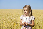 Little girl in a wheat golden field — Foto Stock
