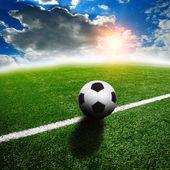 Ball on the green field — Stockfoto