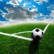 Royalty-Free Stock Photo: Green soccer field