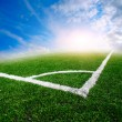 Green soccer field — Stock Photo #13615941