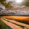 Ground road at sunset - Stock Photo