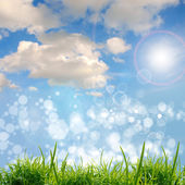 Green grass with the clouds — Stock Photo