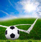 Soccer ball on the green grass — Stock Photo
