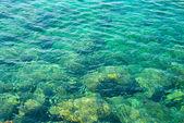 Blue summer sea — Stock Photo