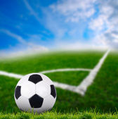Soccer ball on the green grass — Foto Stock