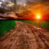 Ground road at sunset — Stockfoto