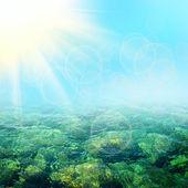 Blå sommaren havet — Stockfoto