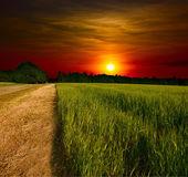 Ground road at sunset — Stock Photo