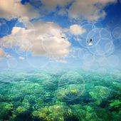синий летом на море — Стоковое фото