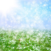 Green field with the snow — Stock Photo