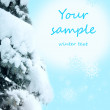 Winter background with snow - Stock Photo