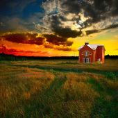 зеленое поле на закате — Стоковое фото