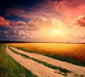 Gün batımında toprak yol — Stok fotoğraf