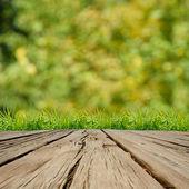Skönhet naturliga bakgrund — Stockfoto