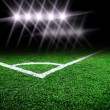 Soccer field with light - Stockfoto