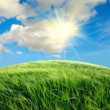 Green field with the sky - Stock Photo