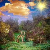 El camino de tierra — Foto de Stock