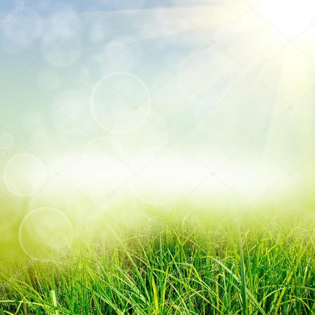 Green nature background — Stock Photo © jonson #20692479