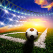 Soccer ball on the field — Stock Photo #23075024