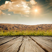 The wooden background — Stock Photo