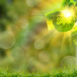 Green summer nature background — Stock Photo #23981665