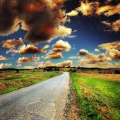 Estrada de asfalto no verão — Fotografia Stock