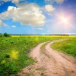 Ground road in the summer field — Stock Photo #28722125