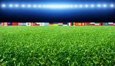 Fußball-Stadion mit Fahnen und Lichter — Stockfoto