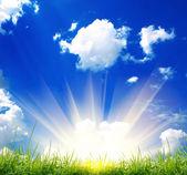 绿草与天空 — 图库照片